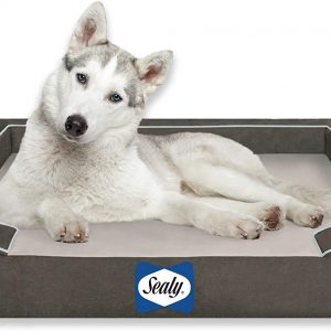 Large Breed Orthopedic Dog Bed