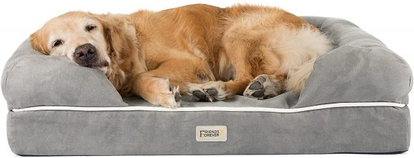 Orthopedic beds for dogs